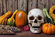 Red Leaf Prints - Skull and gourds Print by Garry Gay
