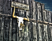 Pioneertown Digital Art - Skull by Danuta Bennett