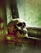 Ledge Posters - Skull on Old Windowsill Poster by Jill Battaglia