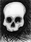 Human Skeleton Drawings - Skull by Rae Hauck
