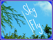 Chem Framed Prints - Sky Fly Framed Print by Mandy Jayne