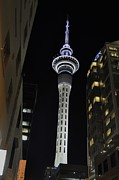 New Zealand Pyrography Prints - Sky Tower Print by Christian  Leano