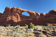 Skyline Arch Framed Prints - Skyline arch in Arches National Park Framed Print by Pierre Leclerc