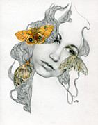 Insect Drawings Prints - Skywalking #1 Print by Patricia Ariel