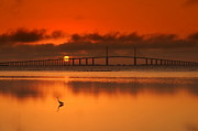 St Petersburg Florida Metal Prints - Skyway Bridge Metal Print by Debbie Friley Photography