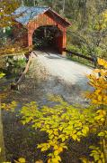 Balance In Life Metal Prints - Slaughter House Bridge And Fall Colors Metal Print by James Forte