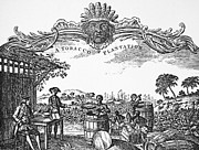1759 Photos - Slavery: Plantation Life by Granger