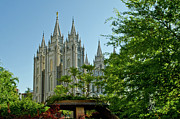 City Scape Metal Prints - SLC Temple Trees Metal Print by La Rae  Roberts