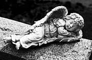 Resting Place Prints - Sleeping Angel Print by John Rizzuto