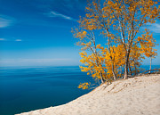 Sand Dunes Metal Prints - Sleeping Bear Dunes Vista 002 Metal Print by Larry Carr
