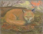 Fox Pastels Prints - Sleeping Fox Print by Lisa Guarino