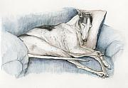 Racer Painting Framed Prints - Sleeping Greyhound Framed Print by Charlotte Yealey