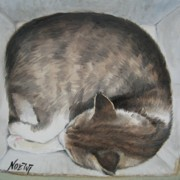 Sleeping Kitty Print by Jindra Noewi