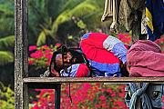 St Photos - Sleeping Rasta-St Lucia by Chester Williams