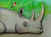 Rhinoceros Framed Prints - Sleeping Rino Framed Print by Robert Lacy