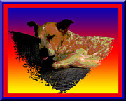 Boxer Digital Art - Sleeping Soundly by One Rude Dawg Orcutt