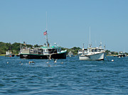 Chatham Prints - Sleepy Boats at Chatham - Cape Cod  MA Print by Mother Nature