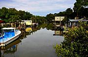 Cedar Key Prints - Sleepy Cedar Key Florida Print by David Lee Thompson