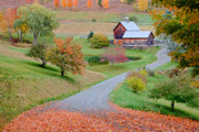 Ly Framed Prints - Sleepy Hollow Farm Autumn Vermont Framed Print by Binh Ly