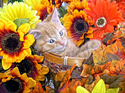 Kitteh Prints - Sleepy Kitty Cat in a Fall Flower Basket with Gerbera Daisies and Autumn Sunflowers Looking Out Print by Chantal PhotoPix