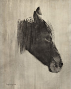 Horse Pictures Prints - Sleepyhead Print by Kathy Jennings