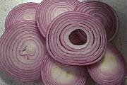Jessica Sanders Art - Sliced Purple Onion by Jessica Sanders