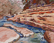 Ledge Painting Posters - Slide Rock Poster by Sandy Tracey