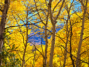 Pauls Colorado Photography Prints - Slight View Print by Paul Gana