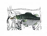 Largemouth Bass Mixed Media - Slim Pickins. by Richard Brooks