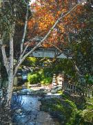 Walkway Digital Art Originals - SLO Creek by Deborah Hildinger