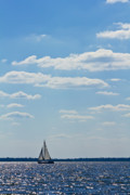 Yacht Photo Originals - Sloop Sailing on the Harbor by Dustin K Ryan