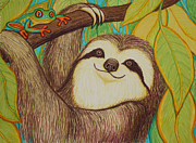 Wildlife Art Drawings Prints - Sloth and frog Print by Nick Gustafson