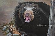 Sri Lankan Artist Paintings - Sloth Bear by Tharanga Herath