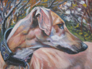 Greyhound Framed Prints - Sloughi Framed Print by Lee Ann Shepard