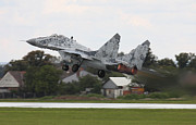 Hradec Prints - Slovak Air Force Mig-29 Fulcrum Taking Print by Timm Ziegenthaler