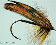 Fly Fishing Mixed Media Prints - Slow Water Caddis Print by James Eugene  Moore