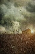 Wooden Building Prints - Small abandoned farm house with storm clouds in field Print by Sandra Cunningham