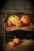 Jack-o-lantern Posters - Small and big pumpkins on an old bench  Poster by Sandra Cunningham