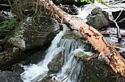 Trout Stream Landscape Prints - Small Beautiful waterfalls Print by Tom Johnson