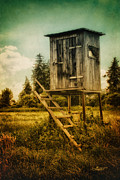 Shack Digital Art Prints - Small Cabin with Legs Print by Jutta Maria Pusl