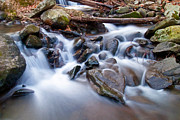 Shelton Framed Prints - Small falls Framed Print by David Freuthal