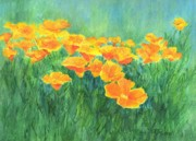 K Joann Russell Art - Small Floral Art California Golden Poppies Bright Colorful Landscape by K Joann Russell
