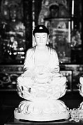 Sha Posters - Small Golden Buddha Statue In Monastery Of Ten Thousand Buddhas Sha Tin New Territories Hong Kong Poster by Joe Fox