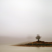 Y120817 Prints - Small Island With Lone Tree Print by Andrew Lockie