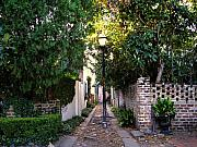Brick Walls Photos - Small Lane in Charleston by Susanne Van Hulst