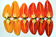 Studio Shot Art - Small Sweet Peppers by Image by Catherine MacBride