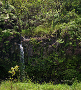 Decor Photos - Small Waterfall - Hana Highway by Paulette Wright