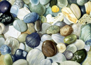 Shells Paintings - Small World by Bob Nolin