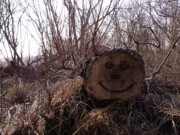 Anna Villarreal Garbis - Smiley Log