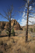 Blank Greeting Card Framed Prints - Smith Rock I Framed Print by Bonnie Bruno